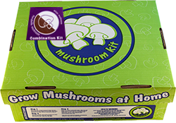 White button and portabello combination mushroom kit