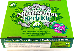 Mushroom and basil herb kit