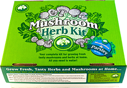 Mushroom and parsley herb kit